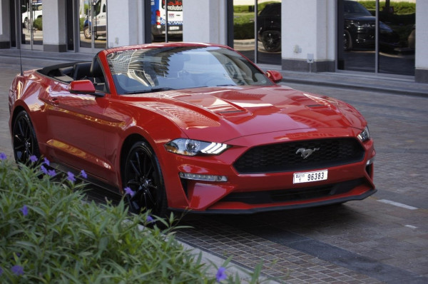 rental Ford Mustang (Red), 2019 in Dubai